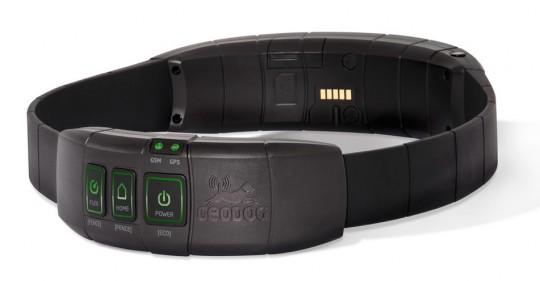 collier GPS pour chien,